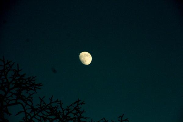 Maan, 16-1-2011 17.57