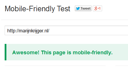 Marijn Krijger Google Mobile Friendly test awesome