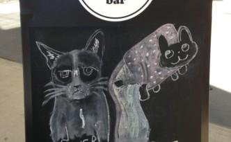 Stoepbord koffie kat