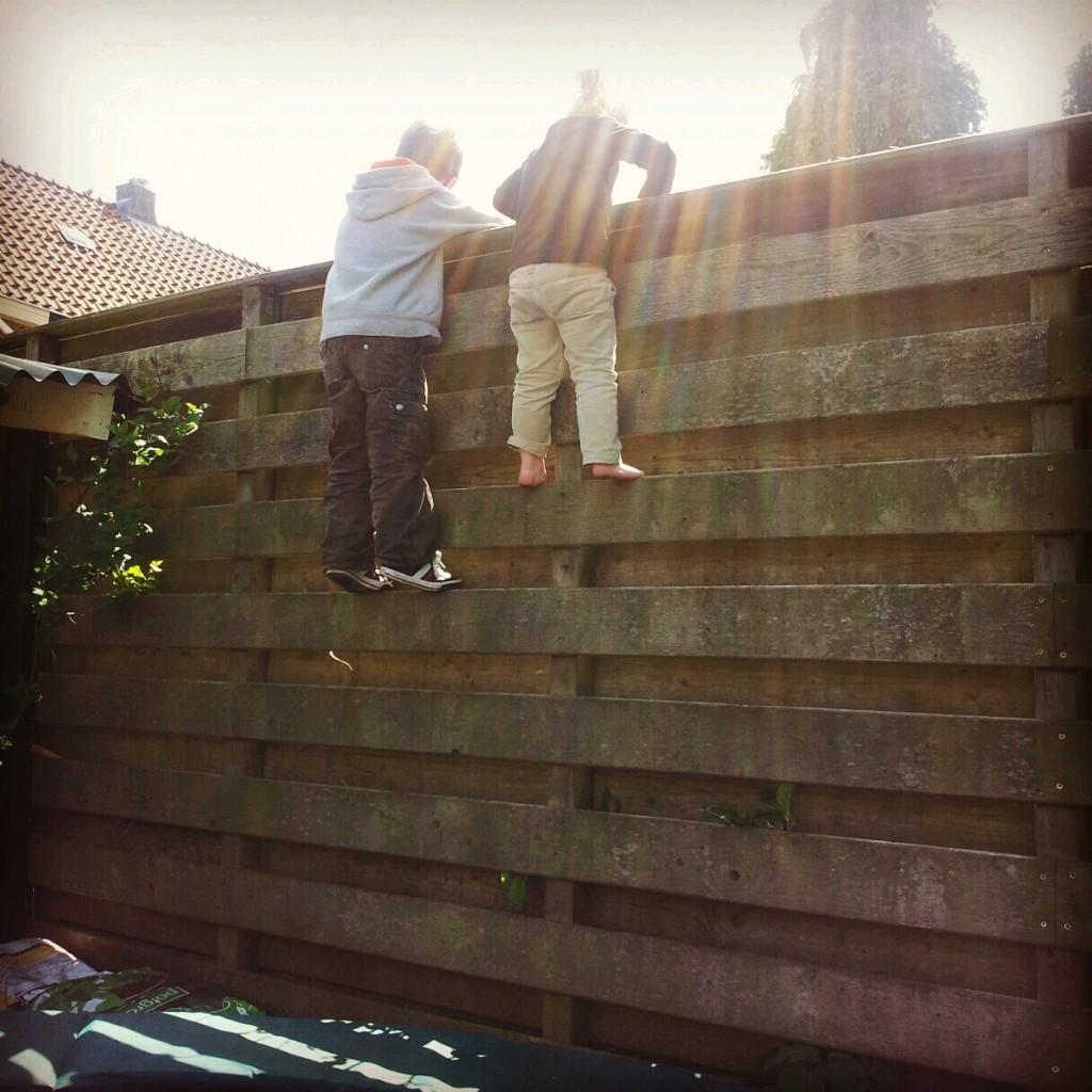 Zeswoordenverhaal - Hoger klimmen om alles te zien