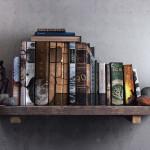 Een Land Rover op de boekenplank