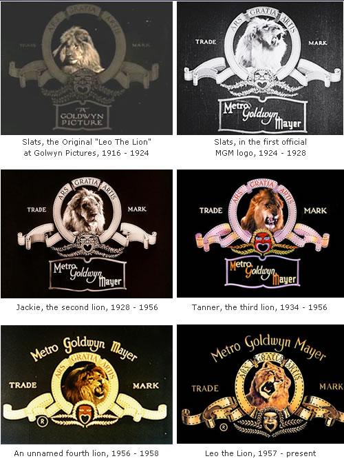 Shooting the MGM logo