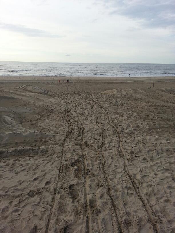 sporen van de rolstoel op het strand