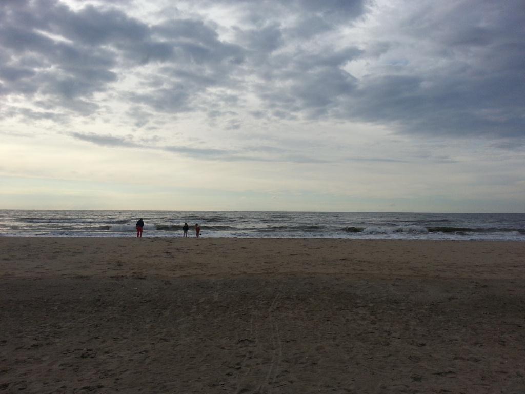 de achteruin, het strand