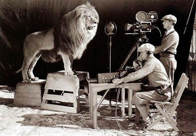De schreeuw van de leeuw, MGM. De film gaat beginnen.