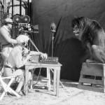 De leeuw van Metro Goldwyn Mayer, knap staaltje branding